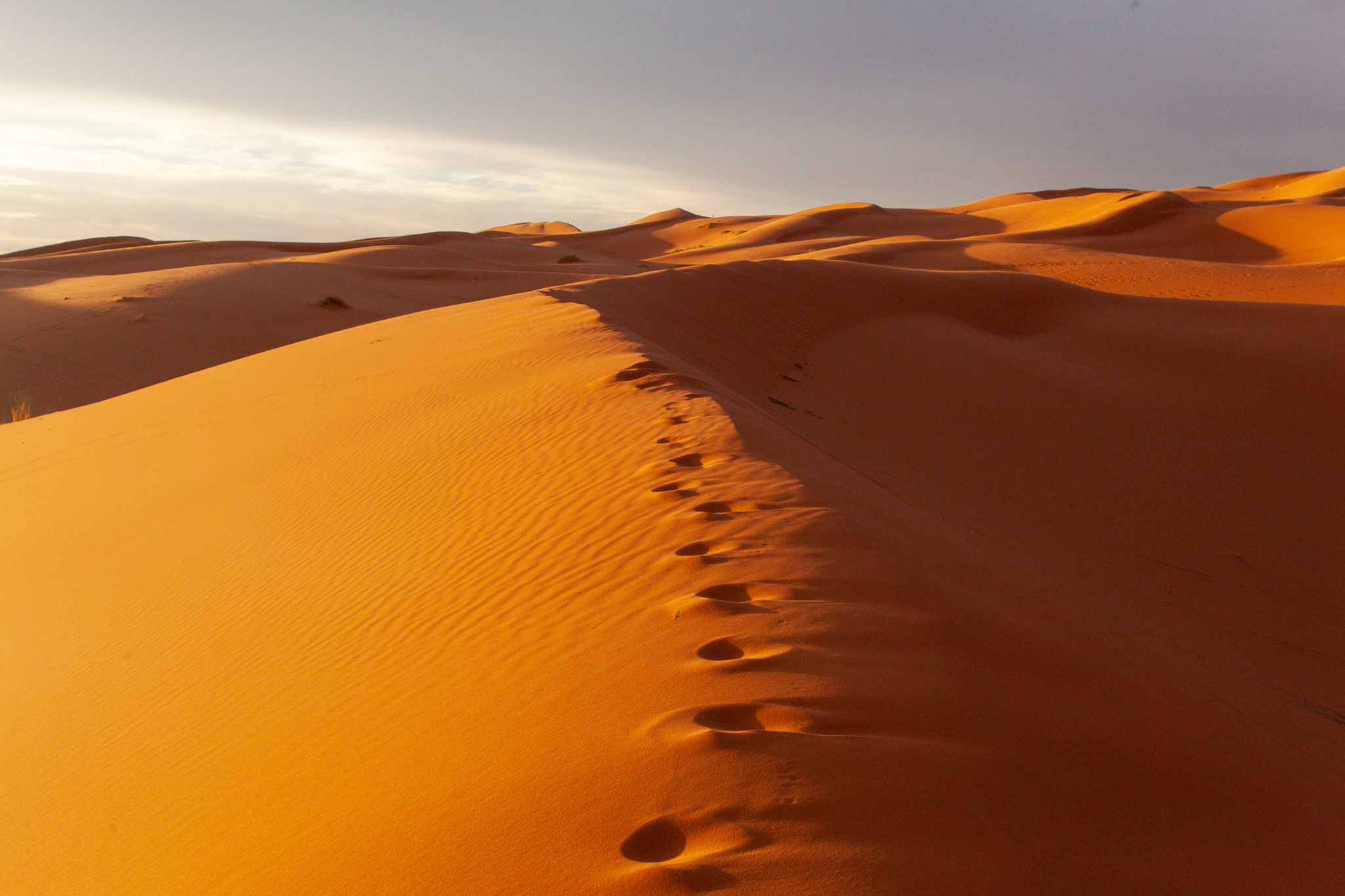 Erg Chebbi - poušť a stopy v písku